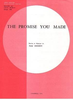 The Promise You Made