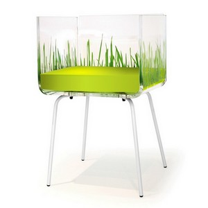fauteuil design transparent