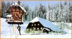 To know more about Black Forest cuckoo clocks