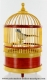 Singing bird automaton in a wicker cage: small mechanical with colored head feathers - Item# for this singing bird automaton : 601992