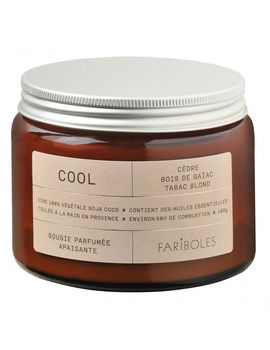 BOUGIE COOL 400G FARIBOLES