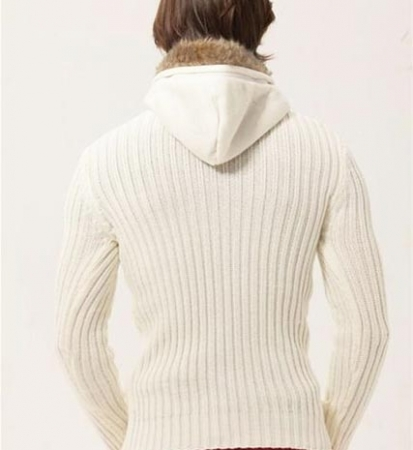 pull homme capuche 3590