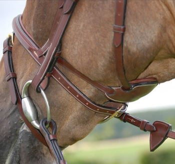 Difference Bridle