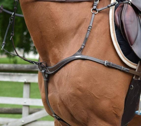 Collier de chasse 5 points + Martingale One