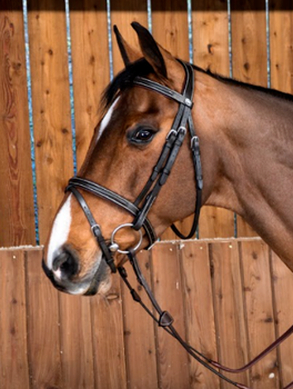 """Combined noseband bridle """"Classic"""""""
