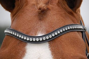 "Browband dressage ""White"""
