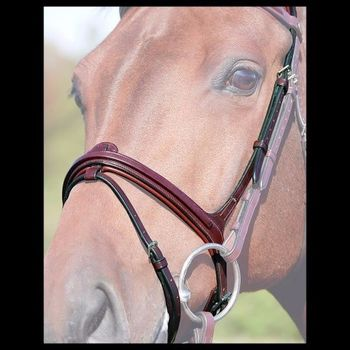Drop noseband flash