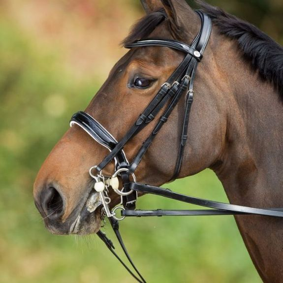 Dressage Double Bridle Weymouth
