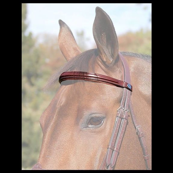 New English Browband