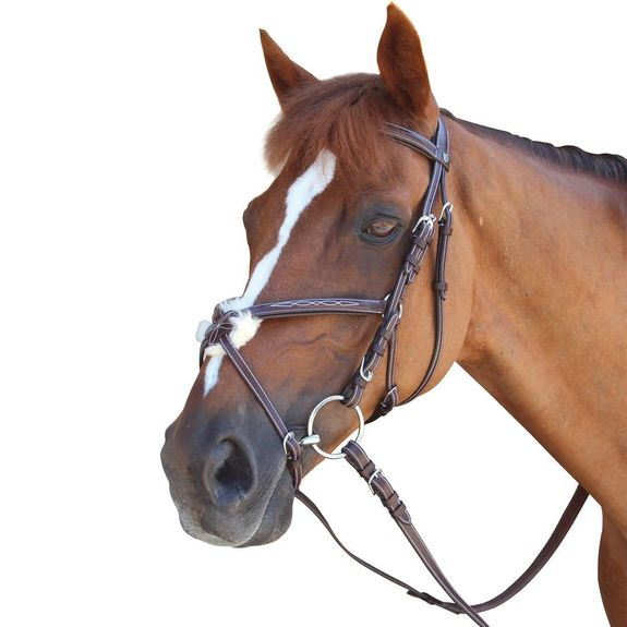 Figure 8 Wellington Bridle