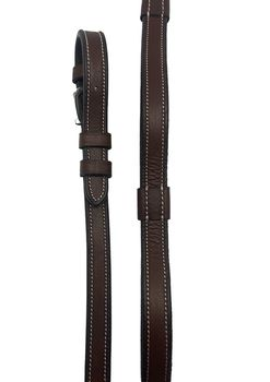 Reins with handles