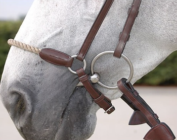 Drop Rope Noseband