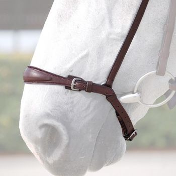 Adjustable Drop Noseband