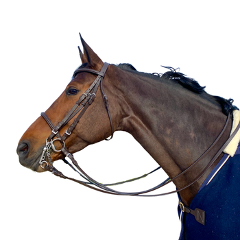 Classical Bridle
