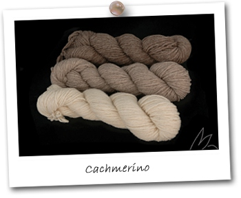 Cachmerino - Natural 1
