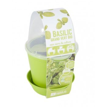 Pot en zinc et kit de plantation Basilic Bio