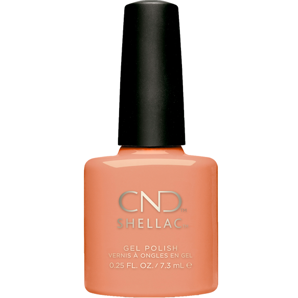 Shells In The Sand SHELLAC™