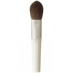 FACE COLOR BRUSH