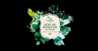 FEE NATURE SEVE DE BOULEAU BIO