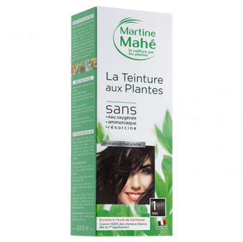 Martine Mahé Teinture aux plantes 3 applications 1 noir