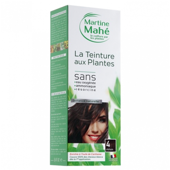 Martine Mahé Teinture aux plantes 3 applications 4 chatain