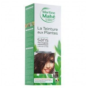 Martine Mahé Teinture aux plantes 3 applications 6 chat clair cendré