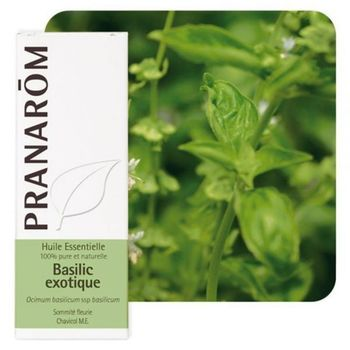 Pranarom HE Basilic exotic 10ml