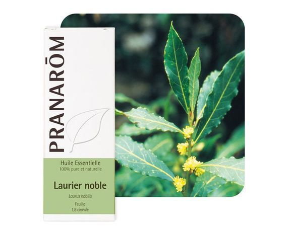 Pranarom HE Laurier noble 5ml