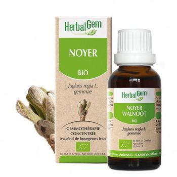 herbalgem Noyer Bio 30ml bourgeons