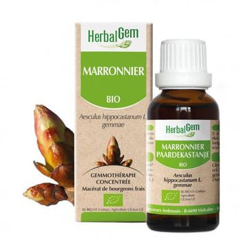 Herbalgem Marronnier Bio 30ml bourgeons
