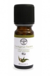 Elixir and co HE Eucalyptus Radiata Bio 10ml