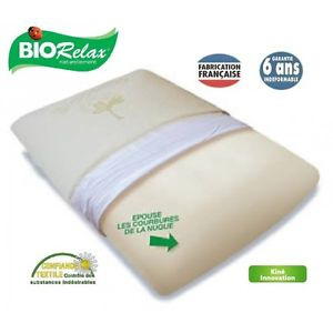 Biorelax Oreiller Carré traditionnel viscovégétal 60 x 60cm