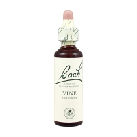 BACH ORIGINAL Vine n°32 - 20ml