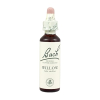 FLEURS DE BACH ORIGINAL WILLOW 38