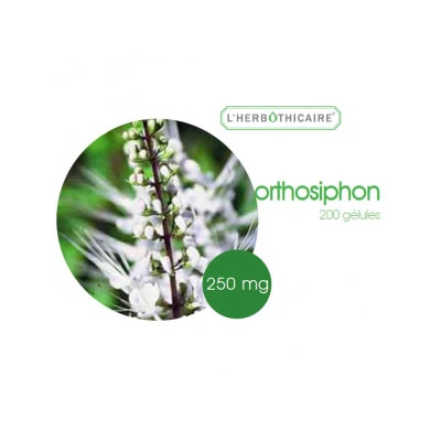 L'HERBOTHICAIRE Orthosiphon