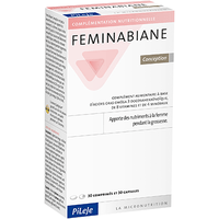 PILEJE FEMINABIANE Conception