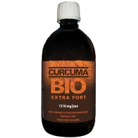 DR THEISS Curcuma Bio Extra Fort - 500ml