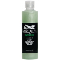 HAIRGUM Menthe Shampooing Anti-pelliculaire - 250ml