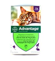 BAYER Advantage 80 Anti-puces Chat et Lapin +4kg - 4 pipettes
