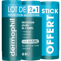DERMOPHIL INDIEN Stick Lèvres Protection Quotidienne Lot de 3 x 4g