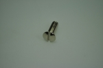 screw for hinge coverplate (2 stainless steel screws)