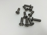 screw for fixation of outer door handle (10 pieces)