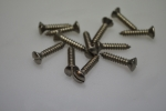 screw for windscreen frame fixation (12 stainless steel screws)