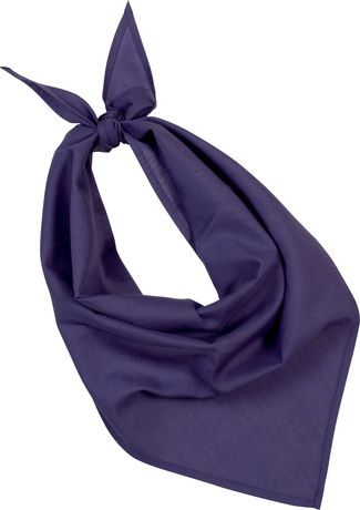 Lot de 10 bandanas fiesta - violet purple