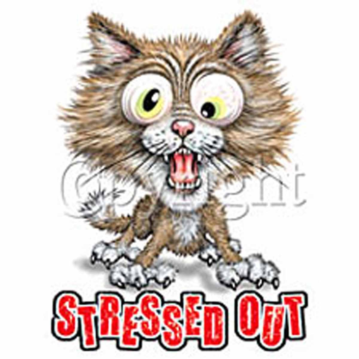 "T-shirt femme manches courtes - Chat stressé ""stressed out"" - humour - 2036"