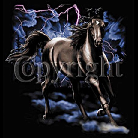 T-shirt HOMME manches courtes -  Cheval orage - 9204