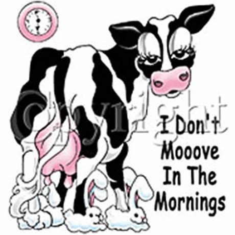 T-shirt femme manches courtes - Vache humour - 9692 - blanc - I don't moove in the morning