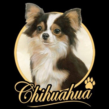 T-shirt femme manches courtes - Chien Chihuahua - 8122