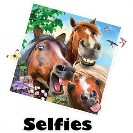 T-shirt HOMME manches courtes -  Chevaux selfies - 2372