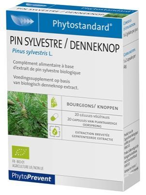 PIN SYLVESTRE traditionnellement utilisé pour : bronchites,laryngites , rhumatismes , arthrites , infections urinaires .
